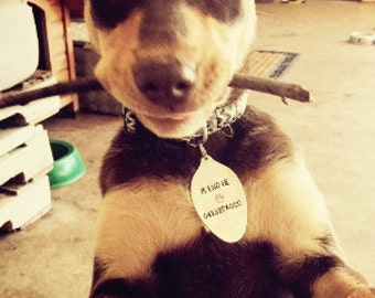 Upcyled Spoon Pet Tags - Personalized for your Furry Friend