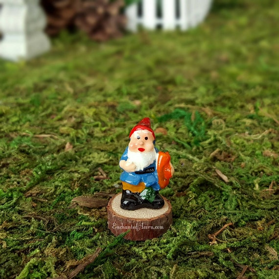 Gnome In Garden: Micro Miniature Gnome With Carrot