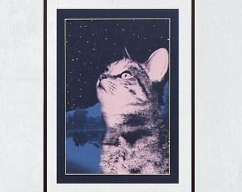 Cat screenprint - Glow in the dark - Kitty Looks At The Stars 02 - Cat lover gift - Cat Art -  11.4 x 16.5 in - A3 -