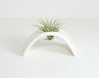 air plant holder, desk plant, desk planter, air plant terrarium, air plant gift, airplant terrarium, tillandsia, ceramic planter