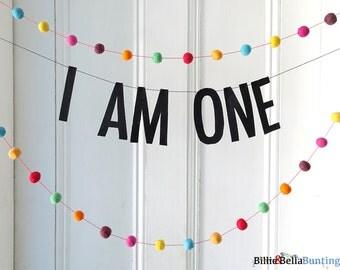 I AM ONE banner, first birthday, boy 1st birthday, girl 1st, girl first, cake smash props, party decorations, garland, backdrop, photo prop