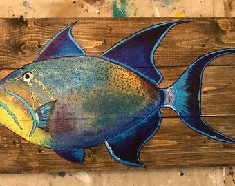 NEW ITEM!!!   Queen Triggerfish