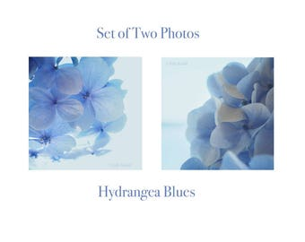 Set of two hydrangea photos, dreamy blue macro. Botanical print, spring decor, French blue, wall art, cottage decor. Hydrangea Blues