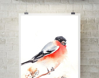 Bullfinch Art Print, Watercolor print, bird painting, bird illustration, bird poster, bird art, wall art