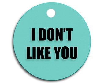 I Don't Like You - Mean Bad Tags for Pets - Pick Your Color + Tag Shape & Size - Personalized Back -  Outrageous ID Tag - Pet Tags Engraved