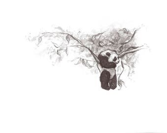 Ringo: A Panda in the Tree.  Giclée Fine Art Print.