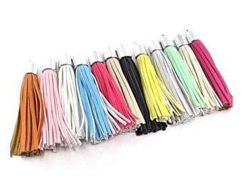 Decorative Tassels - 97mm Long Tassels - 6 Silver Cap, Assorted Colors - Great Purse Tassel, Key Chain Tassel, Tassels for Jewelry - TL-2S01