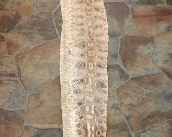 Jumbo Diamondback Python snake skin