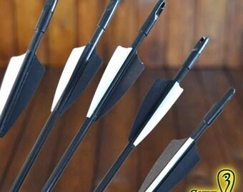 Remplacement fiberglass arrows