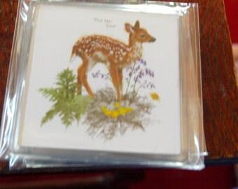 Red Deer Fawn Fridge Magnet