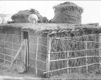 16x24 Poster; Native Yuma Indian Dwelling, Ca.1900 (3532) #031215