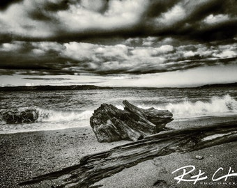Washed Away In Your Waves, Des Moines Beach Fine Art Print, Des Moines Beach Photography
