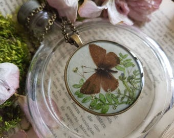 Real flowers flowers chain insect eternity necklace botanical nostalgia bouquet of wild flowers Butterfly Moth Butterfly