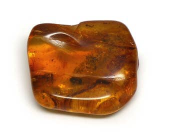 Lithuanian Amber