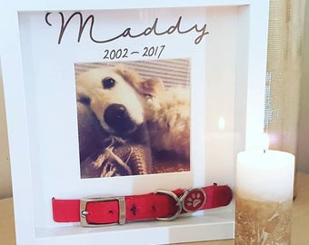 Pet Memorial Frame, Dog Collar Frame, Dog Memorial Frame, Pet Loss, Cat Loss, Dog Loss, Pet Sympathy Gift, Loss of Pet, With Sympathy