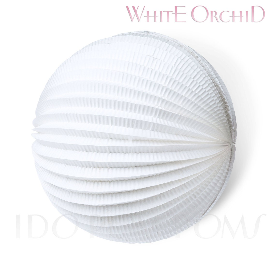 white orchid accordion paper lanterns wedding party