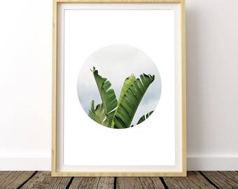 Banana Leaf Decor, Banana Leaves Print, Banana Leaves Art, Banana Wall Art, Banana Leaf Wall Art, Tropical Leaf, Banana Leaf Photo