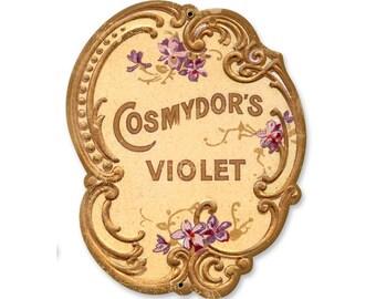 Cosmydors Violet