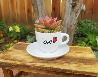 Cute White heart love tea cup set with living succulent
