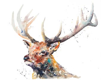 """Stag """"Dartmoor Prince"""" - Limited Edition Mounted Giclee Watercolour print 61.5 x 46.5cm from an original watercolour by Karen Thomas"""