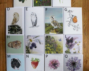 Pack of six assorted greetings cards.