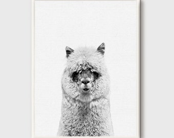 Alpaca, Alpaca Print, Nursery Animal Wall Art, Animal Portrait, Animal Photo Print, Kids Animal Art, Nursery Animal Decor, Peekaboo Decor
