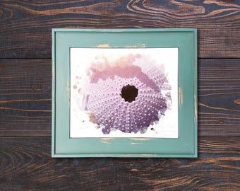 Sea Urchin Watercolor Print Landscape