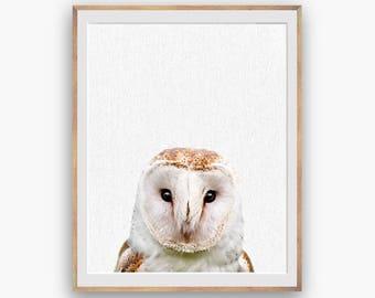 Barn Owl Print, Owl Decor, Owl Wall Art Decor, peekaboo print, Nursery Art, Digital Download, Large Printable Poster, Forest Animals