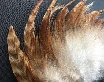 FREE SHIPPING 20 Orange Rooster Feathers Striped Natural Feathers