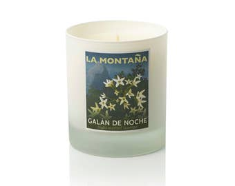 Galán de Noche scented candle - Intoxicating night-scented jasmine, with tantalising hints of rose, orange blossom, and ylang ylang.