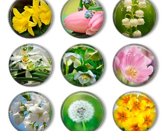 """1"""" Spring flowers  Bottle cap images. Digital Collage Sheet. Flower stickers. Circles for Jewelry Making. Instant download"""