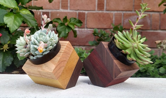 Angled Geometric Wood Succulent Planter
