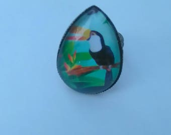"Ring shape drop ""toucan"""