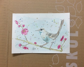 Japanese Bush Warbler & Peach blossoms