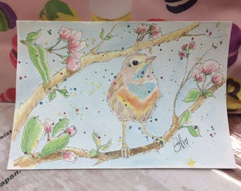 Spring Warbler and Cherry Blossoms