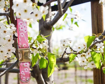 Sakura Dog Collar - Cherry Blossom Dog Collar - Martingale Collar