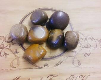 Petrified Wood Tumble Stones, Mineral Specimen, Fossilized wood, Past life Regression, Survival, Arizona, Rocks, Healing Crystals