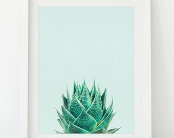 Succulent Print, Succulent Wall Art, Succulent Printable, Succulent Photo, Plant Print Art, Teal, Blue, Mint, Turquoise, Light Blue, AQ01