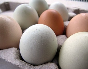 Farm Fresh Eggs, One Dozen, Farm Pickup Only