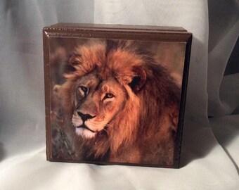 Lion Hear Me ROAR Small Brown & Green Keepsake/Treasure Box