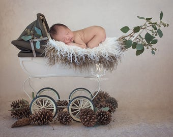 Newborn Digital Backdrop/ Prop / Photography / Vintage pram (Rabbie)