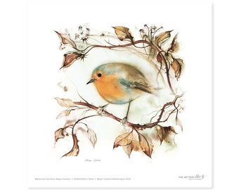 Robin fine art print, watercolor, 8,3 x 8,3 inch, limited edition, painted by Klaus Meyer-Gasters
