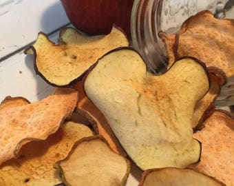 All That In-A Bag of Chips: Dog Treats - Grain Free - All Natural - No Preservatives - Delicious - Healthy - Homemade - Doggie Chips