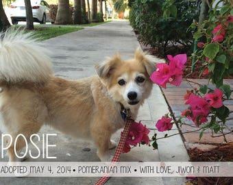 "Dog Adoption Announcement // Postcard or Card // Horizontal // 4""x6"" 5""x7"" // PDF Download"