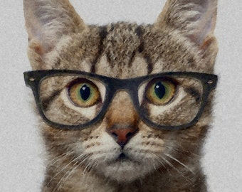 A Cat with Glasses