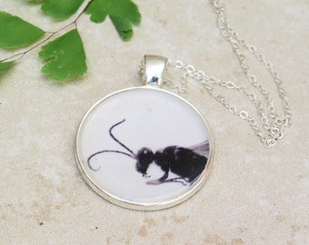 Ant pendant, nature photo pendant, insect jewelry women, nature inspired, insect necklace, and necklace, insect print necklace