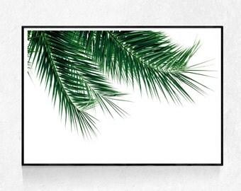 Palm Leaf Print, Tropical Plant, Plant Wall Art, Plant Photography, Leaf Wall Art, Tropical Wall Art Decor, Green Decor,  Printable Art