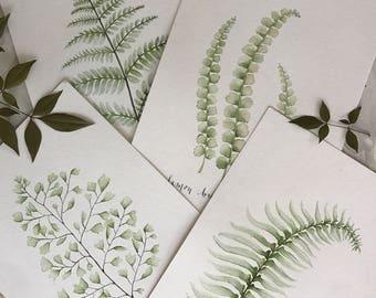 Set of 4 Fern Prints, Watercolor Fern Prints, Watercolor Prints, Watercolor set, Print Sets, Watercolor print sets, botanical prints