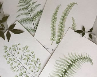 Fern Prints, Watercolor Fern Prints, Watercolor Prints, Watercolor set, Print Sets, Watercolor print sets, botanical prints