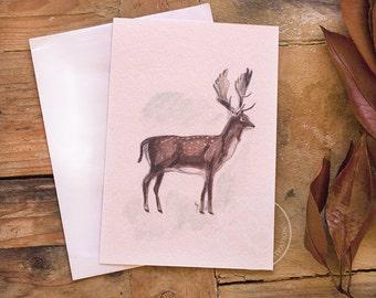 Watercolor Deer Postcard Set